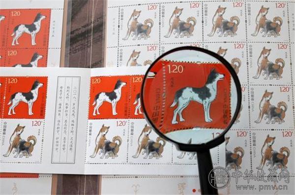 这是在山东省潍坊市拍摄的即将发行的《戊戌年》生肖邮票.jpg
