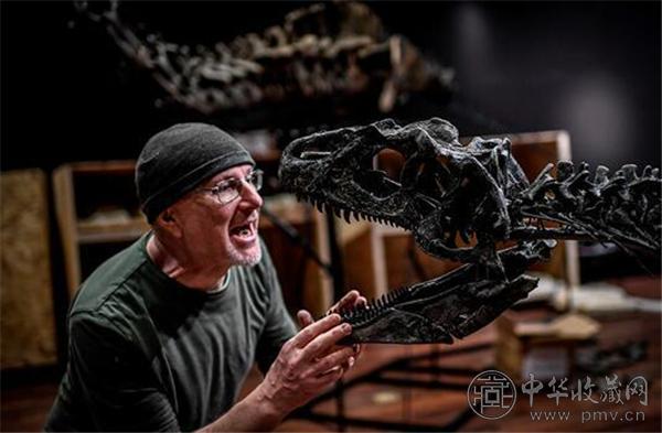 图为 2018 年 4 月 6 日拍摄的资料图片,显示了一位意大利科学顾问组装异特龙遗骨化石.jpg