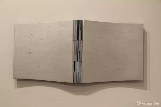 杭春晖《被形式遮蔽的信息-No.10》