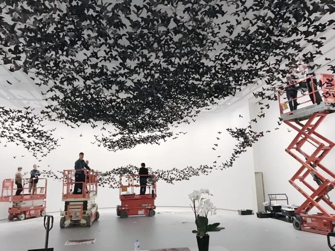 《鸟云》艰辛布展现场,2019,维多利亚州国立美术馆 摄影:蔡国强