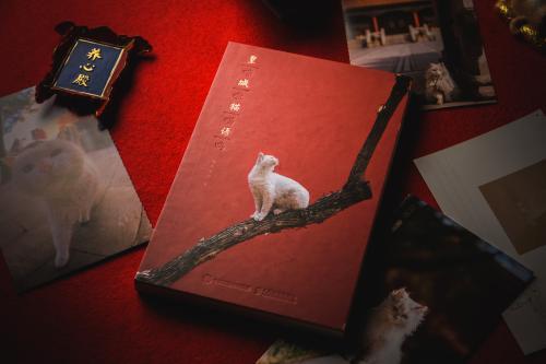 """今年,""""喵呜不停""""的第一本手账《皇城猫语》也出版了。出版方供图"""